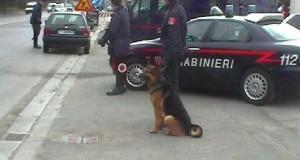 Criminalità in Puglia. Interrogazione al ministro Alfano.