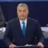 Con il cuore a Strasburgo contro chi non vuole un'Europa solidale. Sì alle sanzioni all'Ungheria di Orban